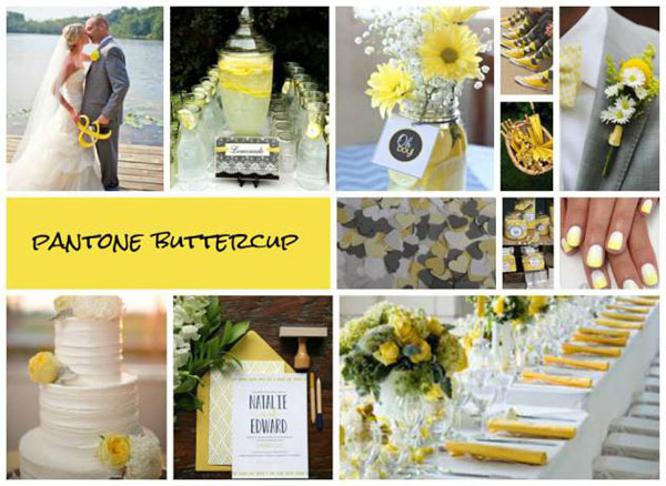 Buttercup-Wedding-2016