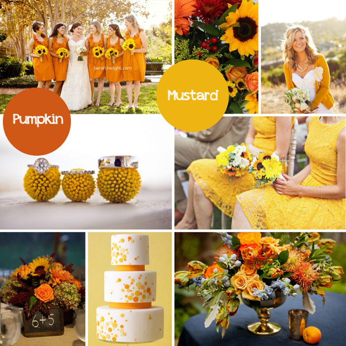 FallColorPalette-Pumpkin+Mustard-1024x1024